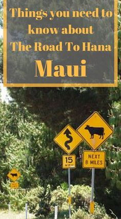 GREAT TIPS you need to know about The Road To Hana Maui. Click to read the full adventure travel post by the Divergent Travelers Adventure Travel Blog Road to Hana Itinerary- Maui, Hawaii http://www.divergenttravelers.com/road-to-hana-adventure-of-a-lifetime/