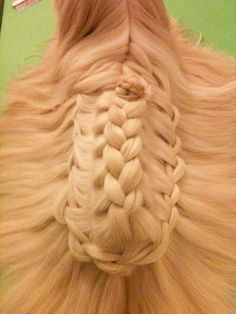 another braided dog!