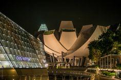 Singapor Art Museum vs Louis Vuitton