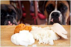 3 Ways to Make a Healing Mash for Dogs with Diarrhea & Gas ... this my dogs love even when they aren't having problems.
