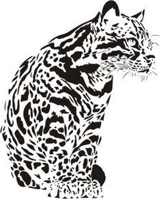 Dzikie koty 16 - ocelot