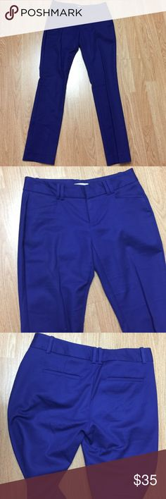VIOLET STRAIGHT LEG BOOTCUT PANTS Perfect pants for someone who work in office, wore twice excellent condition, good for someone who is about 5.2-5.4 tall. 97% cotton 3% spandex Calvin Klein Pants Straight Leg