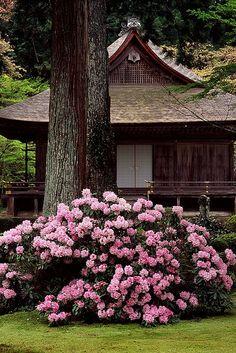 三千院(京都) Sanzen-in Temple, Kyoto, Japan Japanese Culture, Japanese Art, Japanese Gardens, Japanese Geisha, Japanese House, Japanese Kimono, Beautiful Flowers, Beautiful Places, Beautiful Pictures