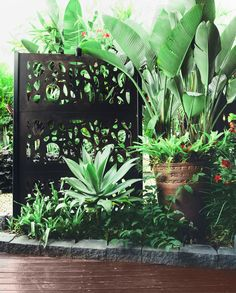 Decorative screens from Eco Outdoor are paired with silver-blue agave and Strelitzia nicolai