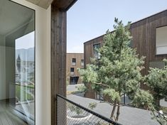 wild bär heule architekten ag Plants, Inspiration, Architecture, Dark Wood Trim, Wood Facade, Roof Styles, Gable Roof, Landscape Diagram, Ground Floor