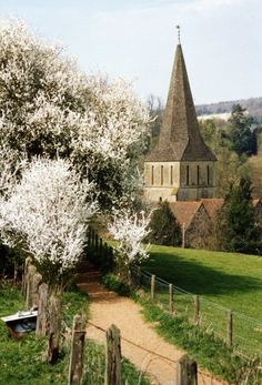 pagewoman:  sourceSt. James' Church, Shere, Surrey, England