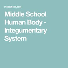 Middle School Human Body - Integumentary System