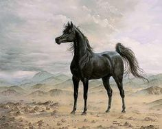 Lovely horse art!