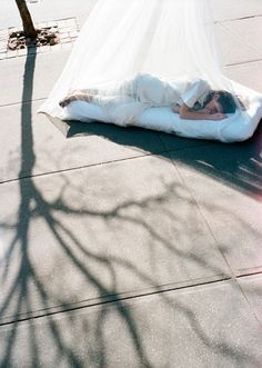 MARK BORTHWICK PHOTOGRAPHY