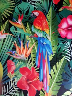 Parrot with tropical plants Royalty Free Vector Image , , Tropical Fabric, Tropical Art, Tropical Birds, Tropical Plants, Tropical Flowers, Exotic Birds, Colorful Parrots, Colorful Birds, Velvet Upholstery Fabric