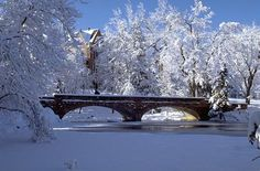 Varsity_Bridge_winter_medium.jpg (500×330)