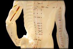 Quantum Reflex Analysis uses acupuncture points to determine the supplements your deficient organs and glands need. If you live in the Baltimore area, call Alyse Shockey at (703)475-1535for a QRA appointment.