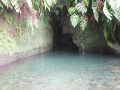 Titou Gorge in Dominca A natural water-ride created by two hot springs, a rock pool and a river. Singles Cruise, Rock Pools, Caribbean Cruise, Vacation Places, Pirates Of The Caribbean, Day Trips, Outdoor Activities, Puerto Rico, Kayaking