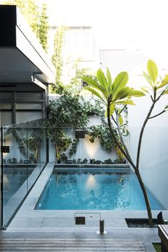 If you like swimming pools, surely you will be interested in these pool designs. There is a swimming pool that is modern but simple. And there is also a luxurious and beautiful swimming pool. Small Inground Pool, Small Swimming Pools, Small Backyard Pools, Small Pools, Swimming Pool Designs, Outdoor Pool, Small Patio, Indoor Pools, Lap Pools
