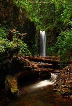 oregon waterfalls | Oregon waterfall by elaine