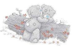 Los osos de peluche