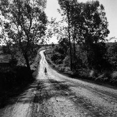 undr:  Haruo Ohara.  Estrada que passava na cabeceira da Chácara Arara em direção ao aeroporto,1949.