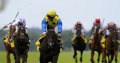 Mary Ann Bernal: The Wizard of Notts Update: Novellist wins the King George VI And Queen Elizabeth Stakes