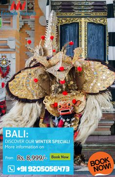 BALI WINTER SPECIAL TOUR PACKAGES, BOOK NOW WITH FRIENDS TRAVELS