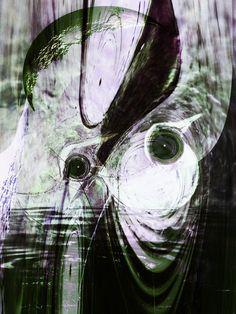 Neu in meiner Galerie bei OhMyPrints: Wasservögel