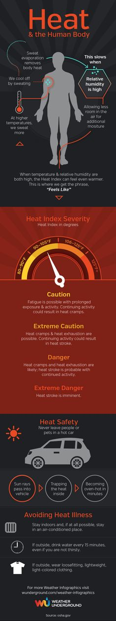 Learn how heat affects the human body⎜Infographic by Weather Underground⎜For more infographics, visit wunderground.com