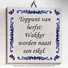 HUMOR: Herfst Wall Quotes, Words Quotes, Wise Words, Sayings, Funny Texts, Funny Jokes, Facebook Quotes, Dutch Quotes, Verse