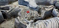Ashfall Fossil Beds. Nebraska.