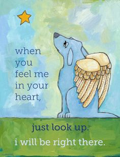 Dog Sympathy Cards - memorial rainbow bridge - 6 cards & coordinating envelopes in clear sleeve I Love Dogs, Puppy Love, Animals And Pets, Cute Animals, Pet Loss, Loss Of Dog, Mundo Animal, Pet Memorials, Sympathy Cards