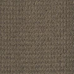 Stainmaster Trusoft Uneqivocal Graphite Berber Indoor