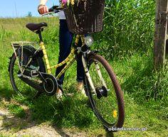 śliczny rower