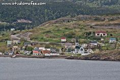 'Downtown Trinity' a view of Trinity NL from the Skerwink Trail Newfoundland And Labrador, Historical Society, Natural Beauty, Dolores Park, Trail, Places To Visit, Canada, Tours, Explore