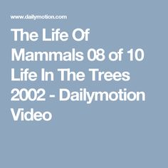The Life Of Mammals 08 of 10 Life In The Trees 2002 - Dailymotion Video