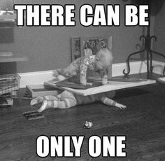 There can be only one #funny #funnypicture, #FunnyBabyPictures View more #funnypictures on http://funny-lover.com/