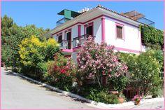 Ambiente in Ireon Samos: PENSION ERMIONI SAMOS IREON pensionen samos rooms for rent ireon rooms pensions Ireon. Einfach das andere hotel in Ireon. Plants, Environment, Viajes, Plant, Planets