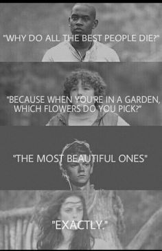 This is not Divergent but its whatever because I still love The Maze runner seri. This is not Divergent but its whatever because I still love The Maze runner series too ! Maze Runner Quotes, Maze Runner Funny, Maze Runner Trilogy, Maze Runner Thomas, Maze Runner The Scorch, Maze Runner Cast, Maze Runner Movie, Maze Runner Series, Maze Runner Characters