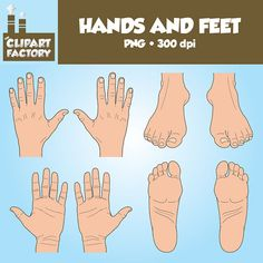 Clip Art Hands and Feet  Color and Black and by TheClipartFactory, $3.00