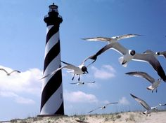 High resolution known places desktop wallpaper of Cape Hatteras Lighthouse, Outer Banks, North Carolina (ID: Jeddah, Lago Erie, North Carolina Lighthouses, Nc Lighthouses, Lago Michigan, Grands Lacs, Cape Hatteras Lighthouse, Outer Banks North Carolina, Lighthouse Pictures