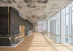 Gallery - Malmö Live / schmidt hammer lassen architects - 4