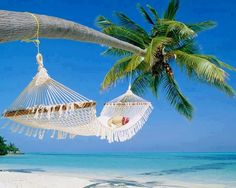 Beach hammock... ahhhhhh!!!  #Swimsuitsforall #BeachBelle #PinYourParadise