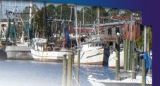 Carabelle Fl is a wonderful little fishing town in the panhandle. People tend to pass it by heading to Apalachicola or St. George, but they are missing out in my opinion.  All the of benefits of the Gulf, none of the crowd.