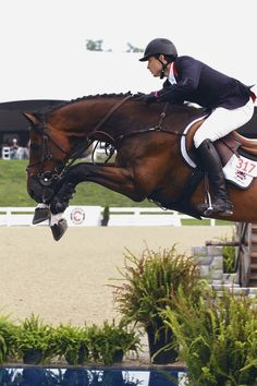 Show Jumping -:EB