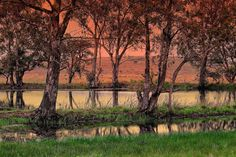 Another Dawn by Johanna Hedderwick on 500px