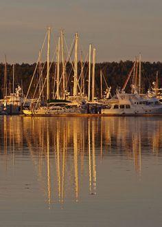 Taken at Sunset - Tsehum Harbour in Sidney, BC - November 2014.