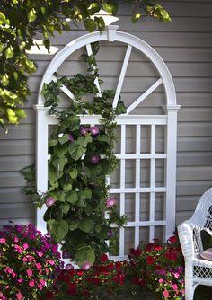 garden decorative trellis - Google Search