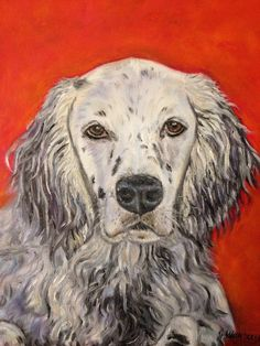 11x14 oil painting of English Setter