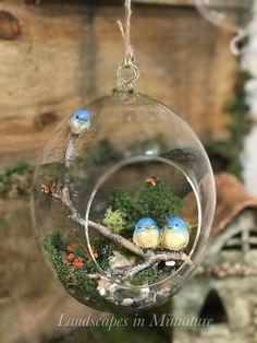 Miniature Terrarium Garden