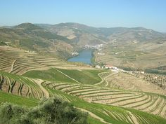 The cultivated hillsides and river valleys of Northern Portugal.