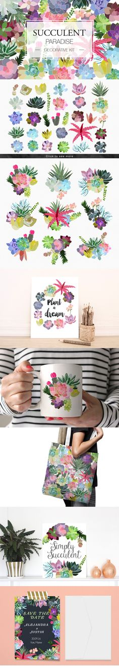 Succulent Paradise. Decorative Kit – Mia Charro