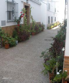 Calle de #Conil en el barrio llamado #Lahuertalosfrailes