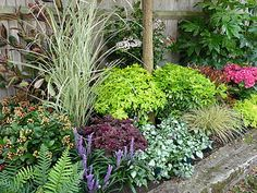 Church business landscaping ideas on pinterest low Low maintenance garden border ideas